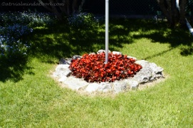 Flag pole flower bed.