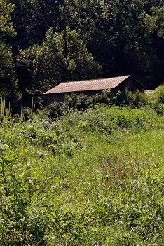 Metal roof on old farm storage barn.